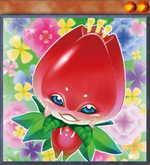Naturia Tulip