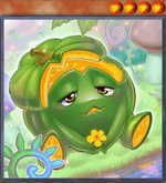 Naturia Pumpkin