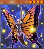 Swallowtail Butterspy