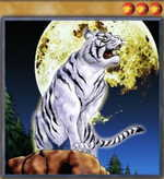 The All-Seeing White Tiger