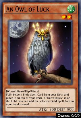 An Owl of Luck