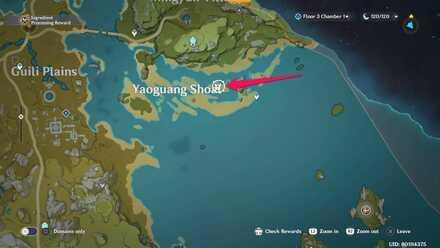 Yaoguang Shoal Agent Location.jpg