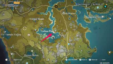Luhua Pool Agent Location.jpg