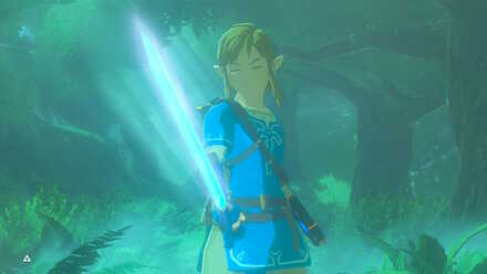 BOTW - Trial of the Sword Fully Awakened.jpg
