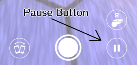 Pause Button.png