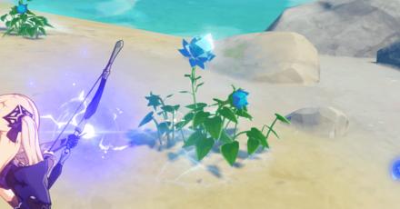 Mist Flower.png