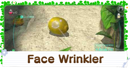 How to Get the Face Wrinkler