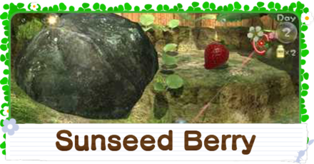 How to Get the Sunseed Berry