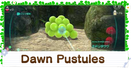 How to Get the Dawn Pustules