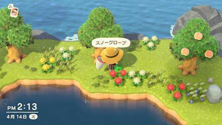 ACNH - Furniture on Mystery Island.jpg
