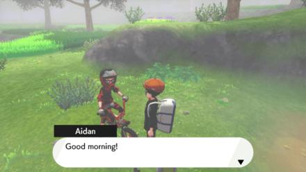 Pokemon - Spiritomb Dialogue People.png