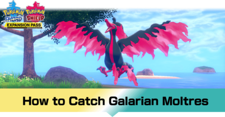 Pokemon - How to Catch Galarian Moltres (1).png