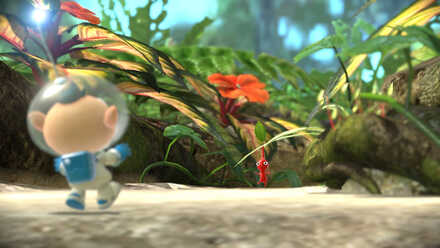 Tropical Wilds Pikmin 3 Deluxe