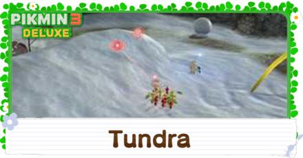 Tundra English.png