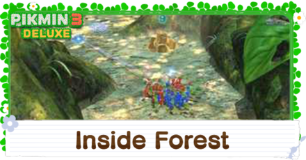 Inside Forest English.png