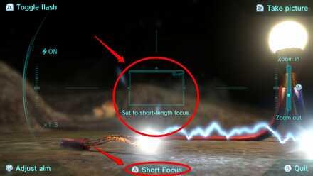 Adjusting Focus.jpg