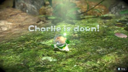 Charlie is Down.jpg