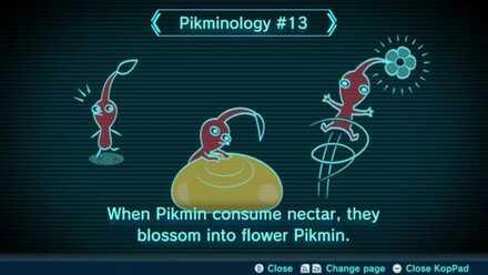 Pikminology #13 Image