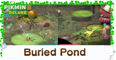 Buried Pond Banner Image