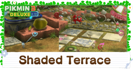 Shaded Terrace Banner Image
