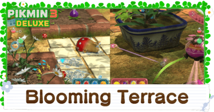 Blooming Terrace Banner Image