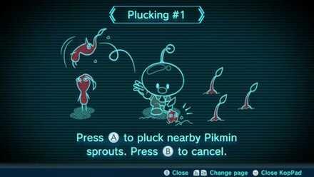 Plucking #1 Image