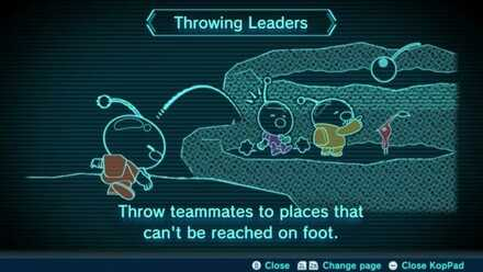 Throwing Leaders Image