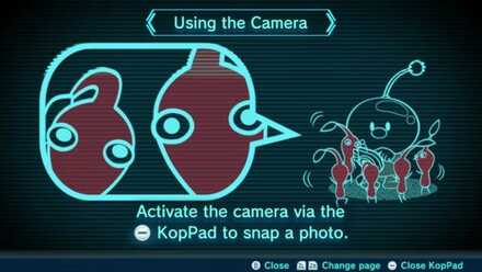 Using the Camera Image