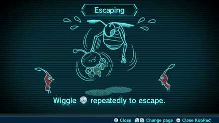Escaping Image