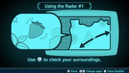 Using the Radar #1 Image