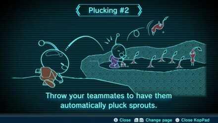 Plucking #2 Image