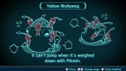 Yellow Wollywog Image
