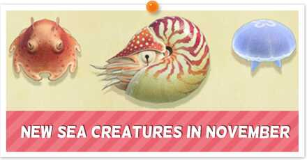 Animal Crossing New Horizons (ACNH) Sea Creatures November