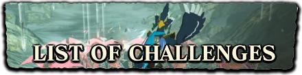 HW:AoC - Challenges