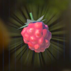 Wildberry Icon