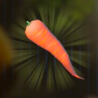 Swift Carrot Icon