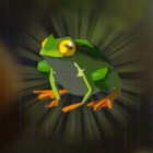 Hot-Footed Frog Icon