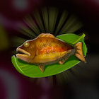 Steamed Fish Icon
