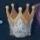 Crown of Insight.jpg