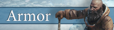 Armor Banner New.png