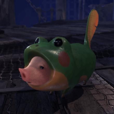 hog in a frog.png