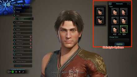 Hairstyle Customization