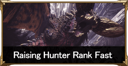 how to raise hunter rank fast top image.png