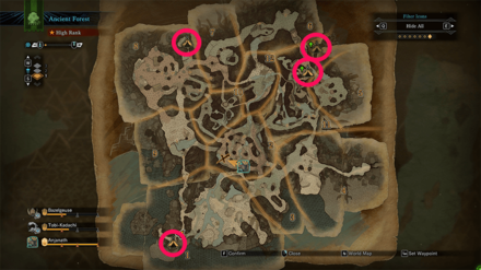 Ancient Forest Camp Locations.png
