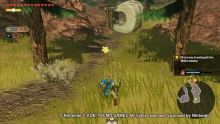 Water and Fire Korok Seed Locations