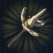 Dragonbone Moblin Spear Icon