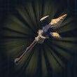 Moblin Spear Icon