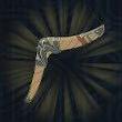 Boomerang Icon