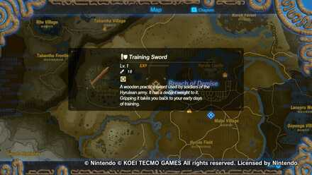 Acquired Training Sword After First Quest