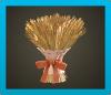 ACNH - Turkey Day Wheat Decor.png
